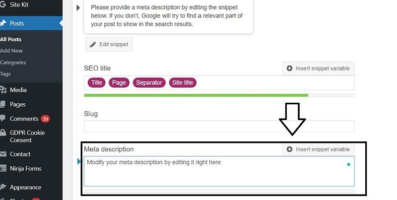 write blog meta description with yoast plugin